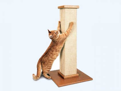 the-best-cat-scratching-post-overall